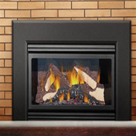 best gas fireplace insert neiltortorella