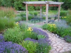 garten lavendel lavender garden wins backyard garden spaces contest