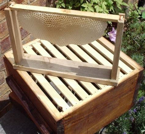 top bar hive frames top bar frames 28 images beekeeping with the warr hive pipeline table top for
