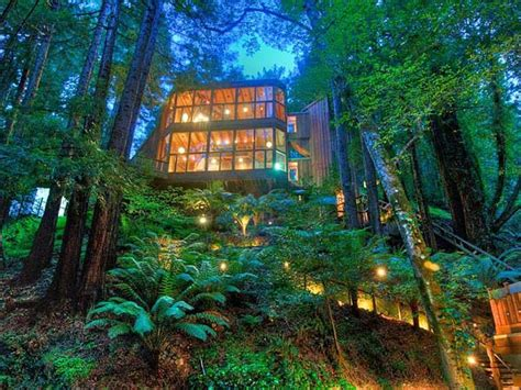 amazing ecoloft a house in the trees enpundit 14 amazing tree houses that will bring out your inner elf