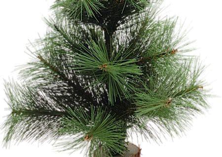 Tannenbaum Nadeln Verhindern by Wie Bleibt Der Weihnachtsbaum Frisch Haushalt Berichte