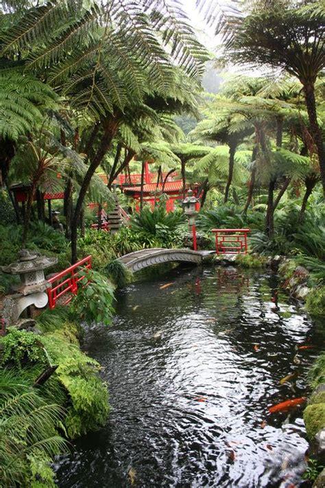 classic japanese park  koi fish   pond japanese