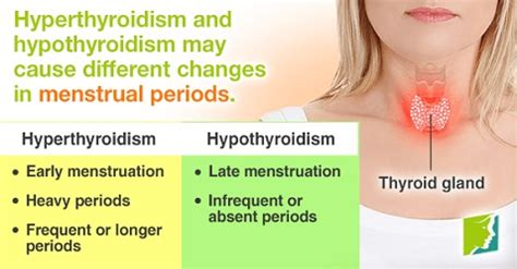 missed menstrual cycles 10 causes of irregular periods home remedies thrombocytes