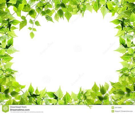 lined paper with leaf border border leaf border paper leaf border paper