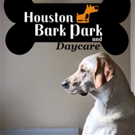 day care houston houston bark park and daycare 32 photos pet boarding pet sitting the heights