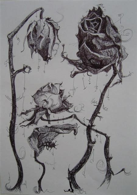 wilted rose tattoo wilted flower dead roses drawing dead flower