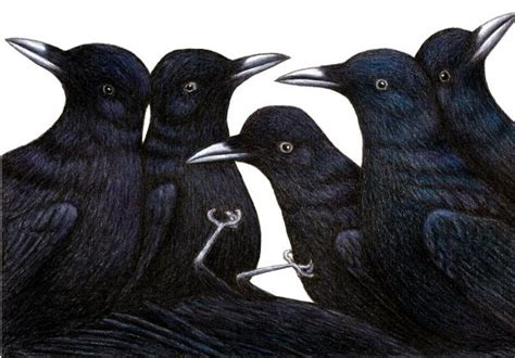 The Murder Of Crows by C Is For Collective Nouns