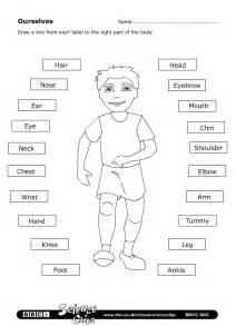 parts of the body worksheet learningenglish esl