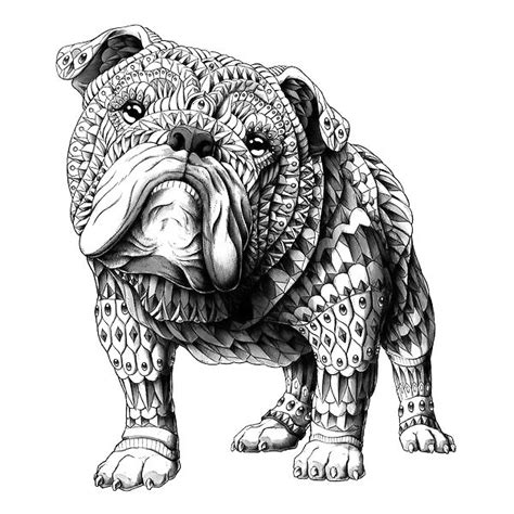 ornate bulldog tattoo design