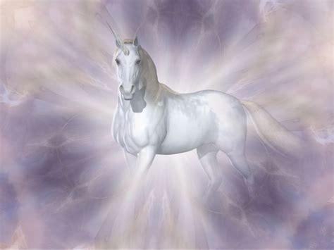 imagenes seres unicornio 65 mejores im 225 genes de vilma en pinterest caballos
