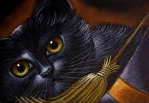 halloween black cats pin by fiona pinsker on black cats pinterest