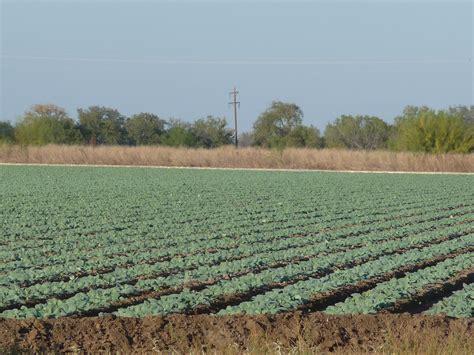 texas farm crystal city texas farm and ranch san antonio military