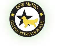 dallas golden retriever rescue community service owner finance homes llc