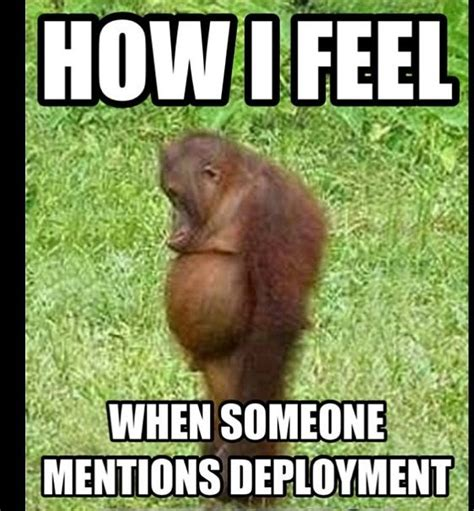 Deployment Memes - the head looking forward and too cute on pinterest