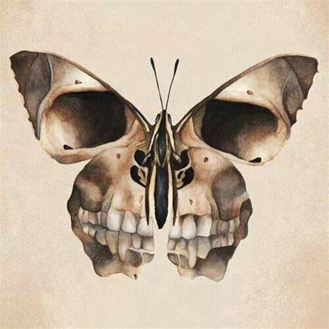butterfly skull frame picture and hang inside a witch s