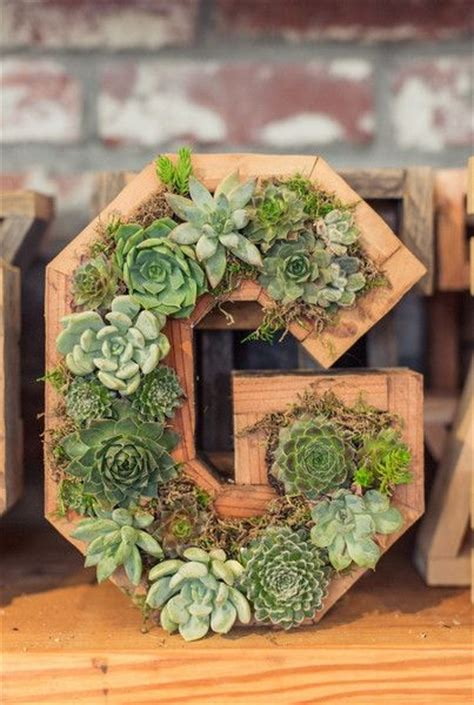 Succulent Letter Planter by 1000 Ideas About Succulent Wall On Vertical