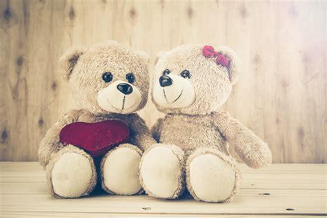 wallpaper of couple teddy bear beautiful teddy bear hd wallpapers hd wallpapers images