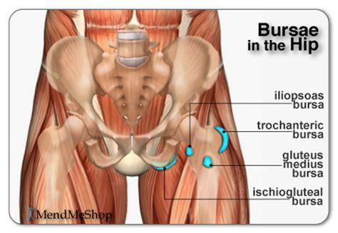pulled groin diagram remedy for flexor tendinitis popliteus