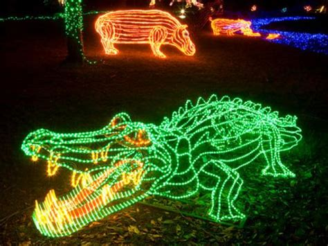 Get A Double Dose Of Fun With Holiday Zoo Lights Drive Zoo Lights Oregon