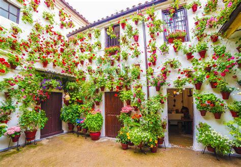 patios cordobeses 30 fotos para enamorase de los patios cordobeses