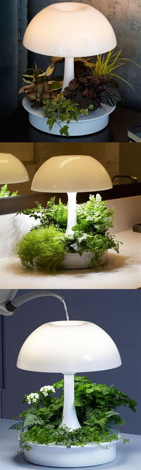 t5 grow lights for indoor plants best 25 grow lights ideas on grow lights for