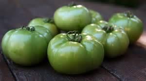 kitchen window green tomatoes an end of summer bonus npr
