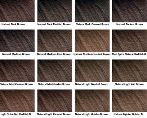 brown hair color chart hair brown hair chart brown