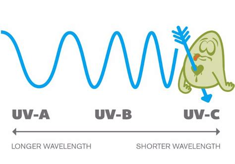 how ultraviolet light kills bacteria how does uv light sanitize and clean germicidal uv c