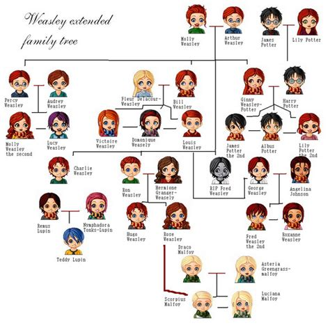 the cole family tree potter family and friends all about harry potter harry potter family trees