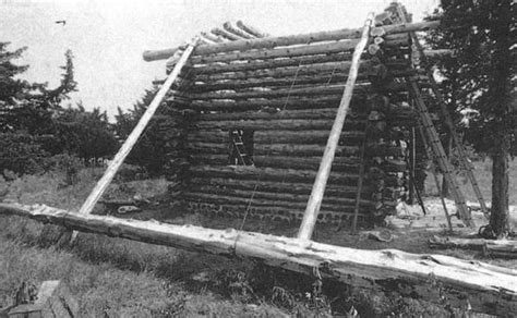 tools for building a log cabin how to build this log cabin for 3 000 cool tools