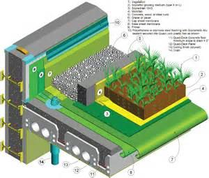green plans go green calton foundations