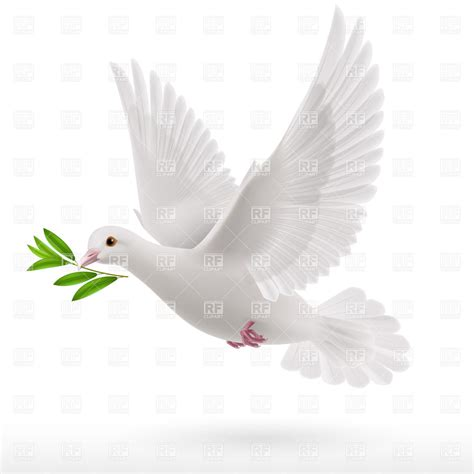 flying with a dove flying with a green twig in its beak vector image 35686 rfclipart