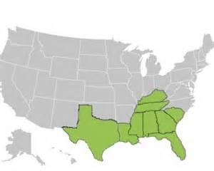 southeast us region map blank map southeast us search results calendar 2015