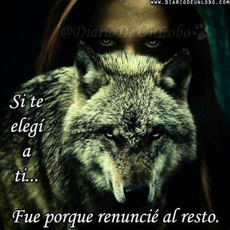 imagenes con frases de amor con lobos las 25 mejores ideas sobre lobo solitario en pinterest