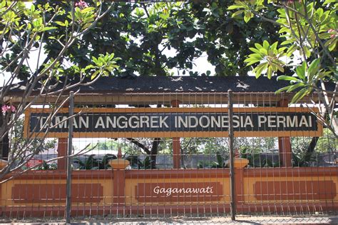 Bibit Anggrek Sukabumi taman anggrek indonesia permai sepi pengunjung oleh