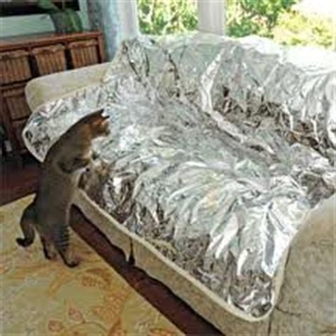 keep dog off couch with aluminum foil most recommended products that keep dogs off the couch