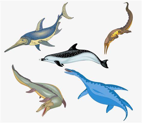 los animales marinos marine 8467535709 la vida de los animales marinos ocean biol 243 gicas mar profundo png image para descarga gratuita