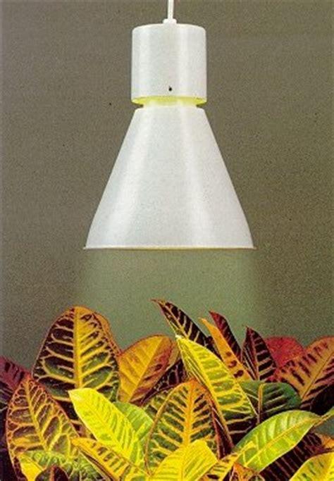 Pflanzen Ohne Licht by Ohne Licht Geht Nichts Gkr Hydrokulturen Begr 252 Nungen