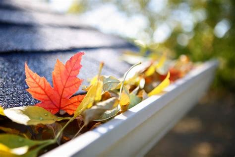 5 ways to get your home ready for fall safebee