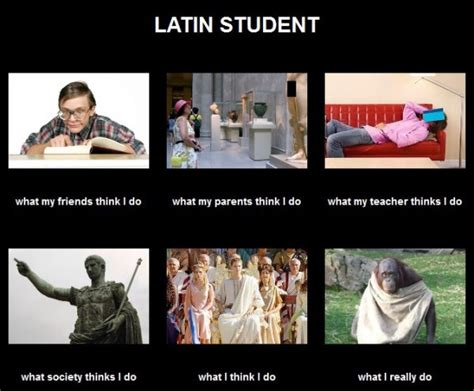 Student Memes - 23 best images about latin love on pinterest jokes