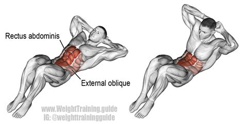 crunch exercise instructions  video exercises
