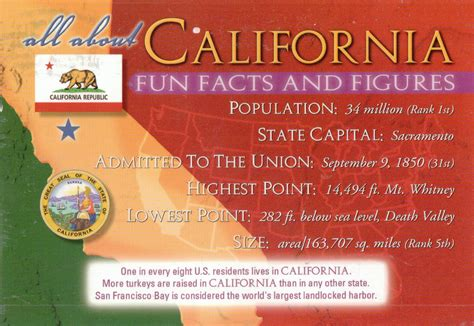 how to a deaf not to bite candle seattle cool facts about california