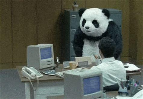 imagenes gif de kung fu panda angry kung fu panda gif find share on giphy