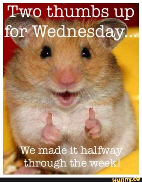 Happy Wednesday Meme - two thumbs up for wednesday pictures photos and images