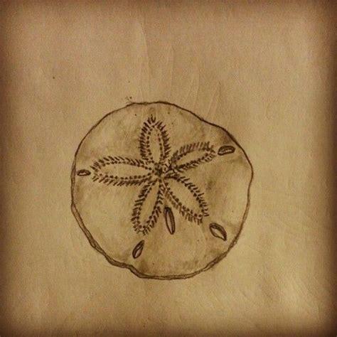 sand dollar tattoo sand dollar sketch by ranz