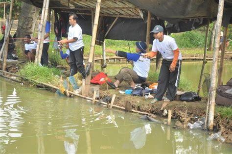 Cacing Untuk Lele umpan mancing ikan bahan dasar pelet 2018 jitu