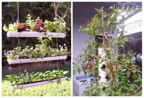 Pipa Hidroponik Di Dinding 5 teknik dan 2 metode menanam sayur di pipa paralon dan