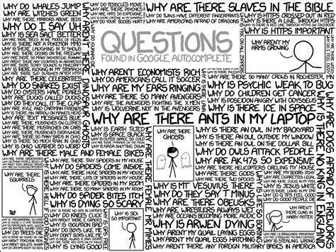 a list of the most googled quot why do quot questions in each quot why are there ants in my laptop quot and all the other weird