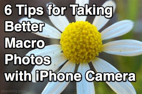 how to take better photos with iphone 6 tips for taking better macro photos with the iphone