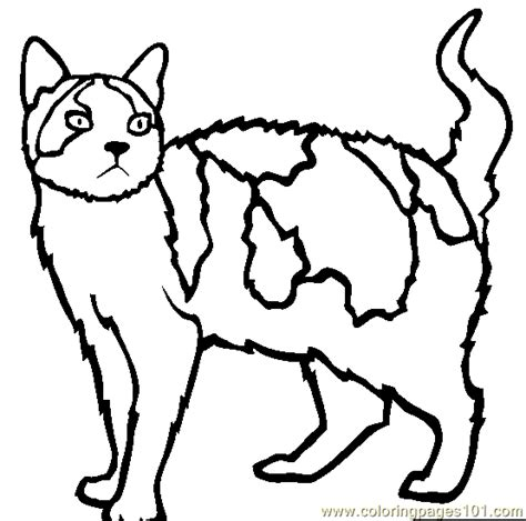 wild cat coloring page free coloring pages of uk wildcats